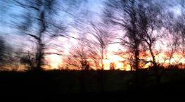 January Hertfordshire sunset
