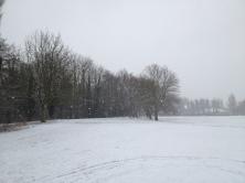 Hartham Common